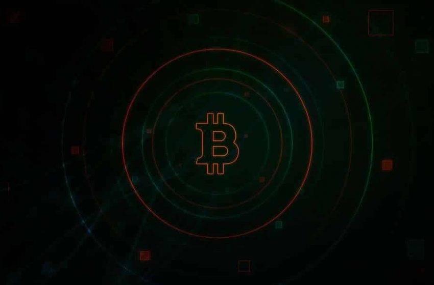 Bir karşılaştırma ölçütü olarak: Bitcoin