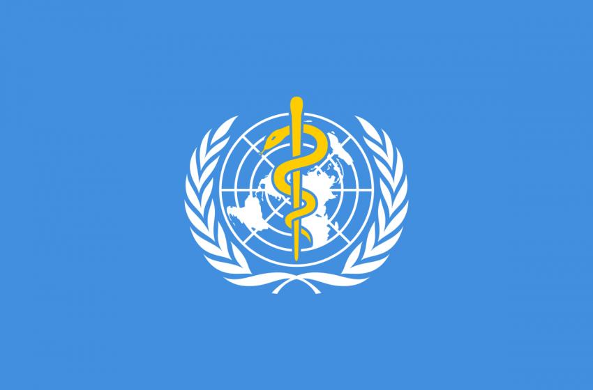 Dünya Sağlık Örgütü oyun şirketleriyle anlaşıyor