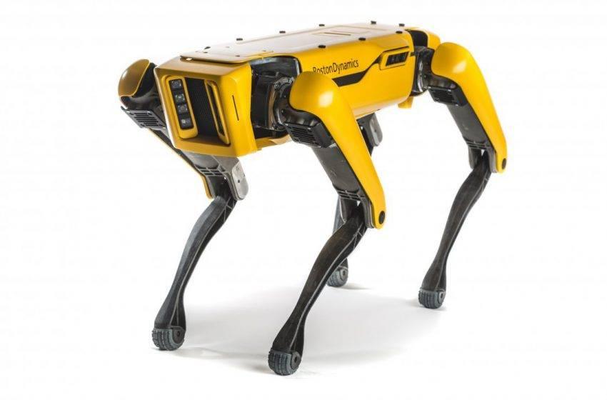 Boston Dynamics robot köpek Spot'u satışa sundu! İşte fiyatı