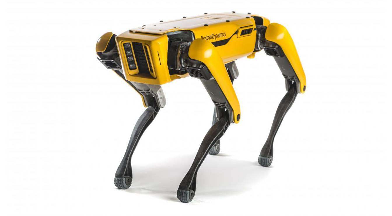Boston Dynamics robot köpek Spot'u satışa sundu! İşte fiyatı ...