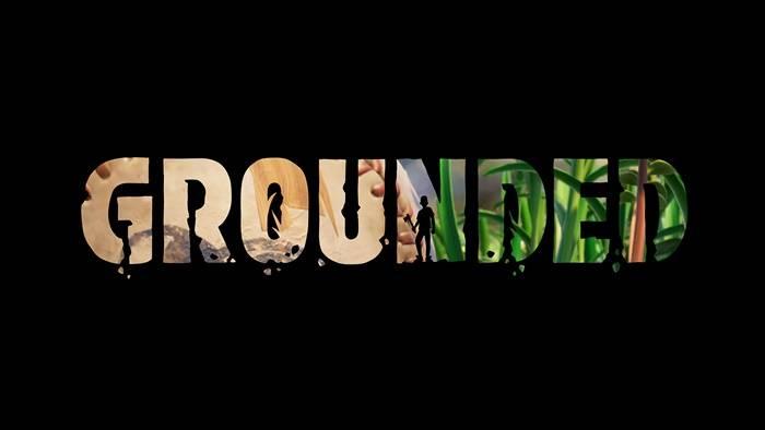 48 saatte 1 milyon oynanan hayatta kalma oyunu: Grounded