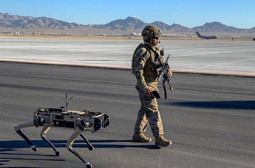 ABD ordusu robot köpek test ediyor