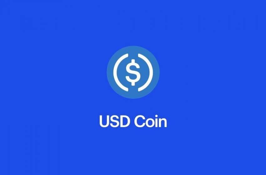 Sabit fiyatlı kripto para USDC yüzde 80 büyüdü