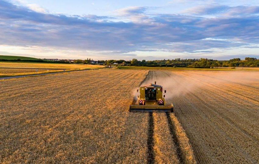 Yield Farming nedir? Yield Farming nasıl yapılır?