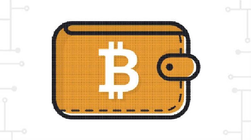 100'den fazla Bitcoin'e sahip cüzdan sayısı giderek artıyor