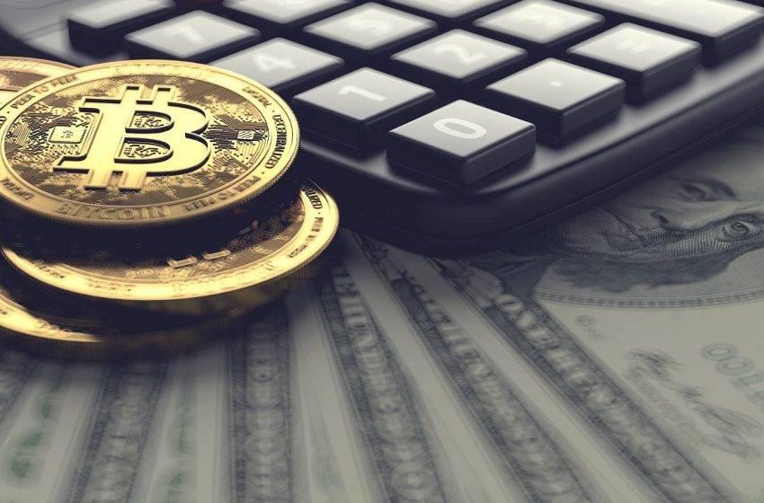 ABD en büyük Bitcoin balinaları arasında yer alıyor
