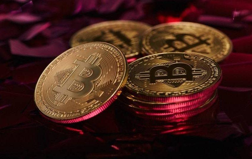 """Anket: """"Bitcoin ve Tesla hisse senedi en büyük balonlar"""""""