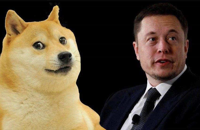 Elon Musk Dogecoin yazması yetti! Yüzde 50 artış