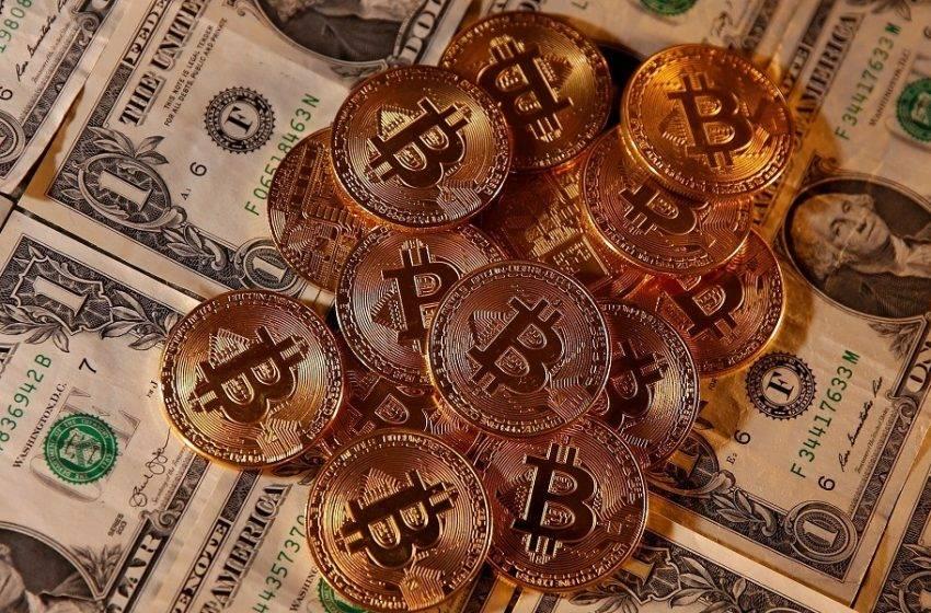 ABD'liler kripto para meraklısı çıktı!
