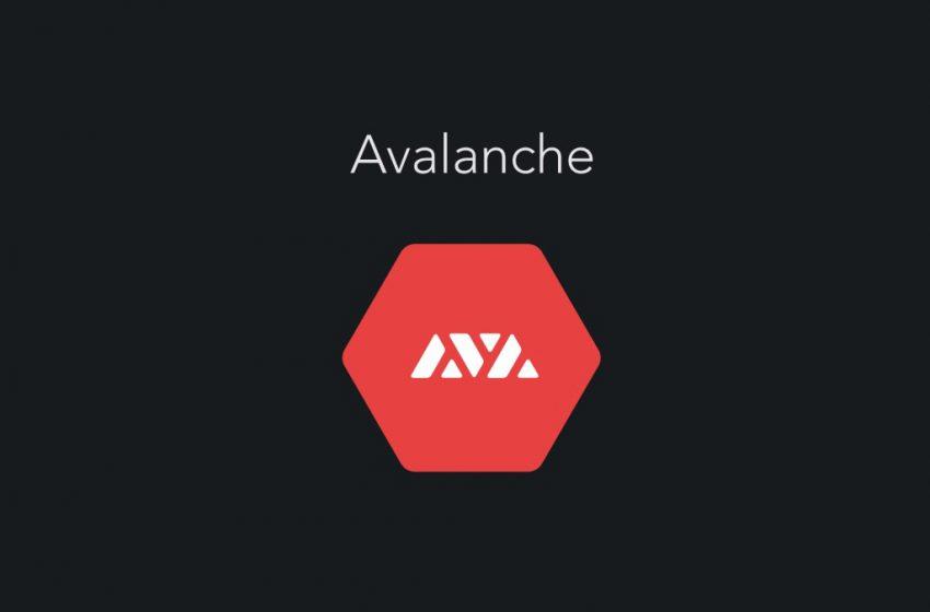 Tether Avalanche ağını kullanmaya başlıyor