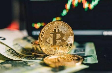 Cüzdanlardan borsalara Bitcoin gönderimi arttı