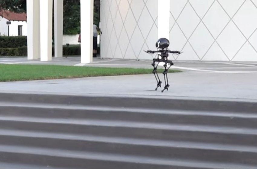 Uçabilen robot Leo görücüye çıktı